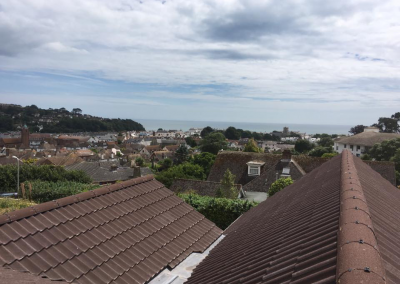 rooftops and houses